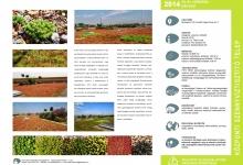 Extenzív zöldtető kategória - 2. helyezett