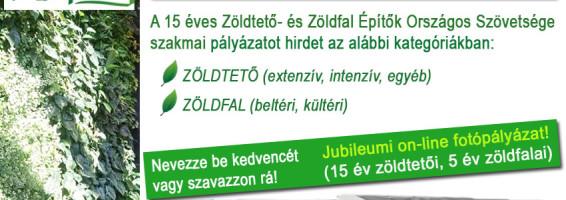 zeoszpalyazat (2)