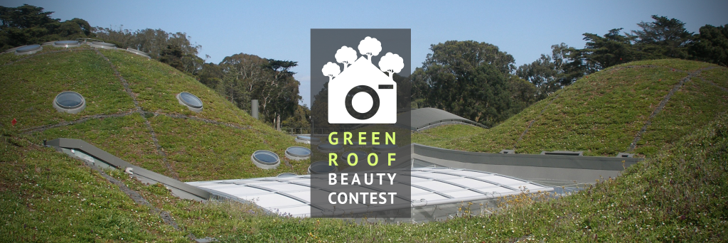 Green Roof Beuty Contest 2016