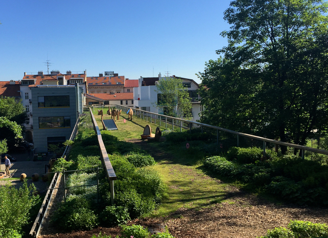 Intensive-green-roof-Brno-1